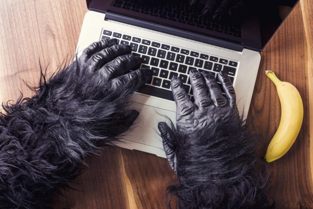 Než začnete psát, je důležité si udělat kvalitní rešerše.